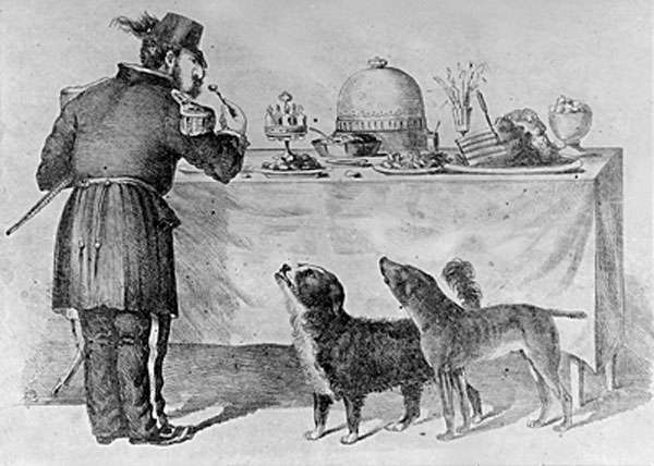 12) During the 1860s, in San Francisco, two stray dogs who were best friends became local celebrities. Their exploits were celebrated in local papers and they were granted immunity from the city's dog catchers.