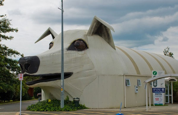 13) There is this crazy dog-shaped building in New Zealand.