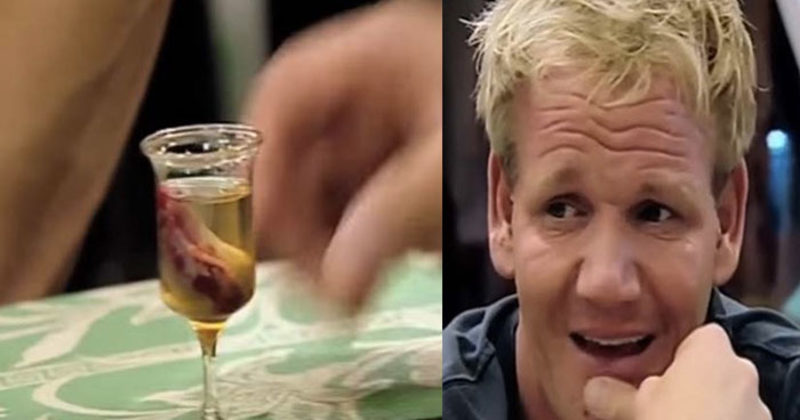 What Gordon Ramsay Ate In Vietnam Is Insanely Disturbing…What Did It Taste Like?
