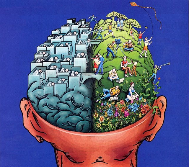 8.) There is no left brain/right brain divide. They are constantly working together.
