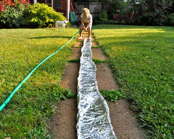 10.) Use foil to make a big river in the backyard.