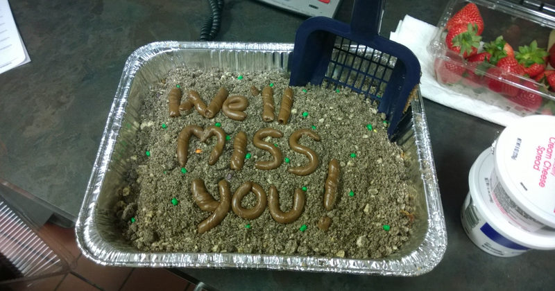 When Their Coworkers Found New Jobs, These 22 People Made Hilarious Goodbye Cakes